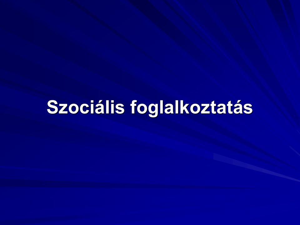 Szociális foglalkoztatás