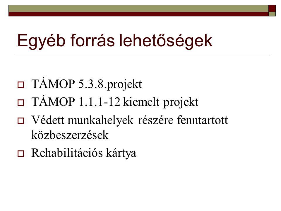 Egyéb forrás lehetőségek  TÁMOP 5.3.8.projekt  TÁMOP 1.1.1-12 kiemelt projekt  Védett munkahelyek részére fenntartott közbeszerzések  Rehabilitációs kártya