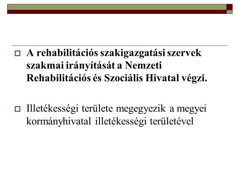  Hatósági bizonyítvány: az ügyfél kérelmére, az egészségi állapotát tartalmazó komplex minősítés alapján kiállított bizonyítvány.