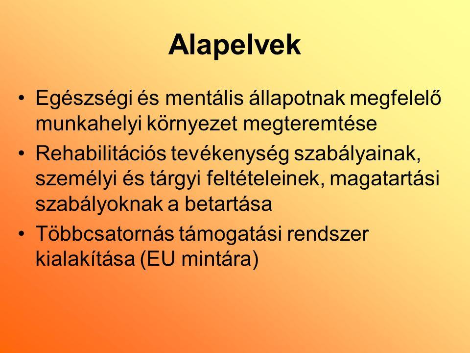 Alapelvek Egészségi és mentális állapotnak megfelelő munkahelyi környezet megteremtése Rehabilitációs tevékenység szabályainak, személyi és tárgyi feltételeinek, magatartási szabályoknak a betartása Többcsatornás támogatási rendszer kialakítása (EU mintára)