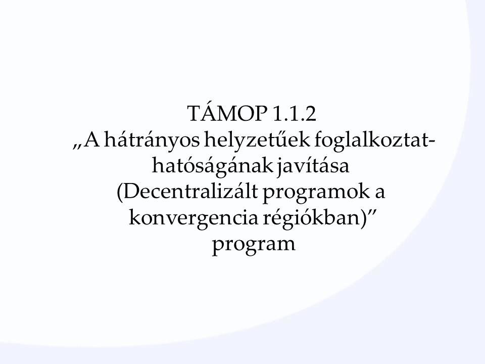 """TÁMOP 1.1.2 """"A hátrányos helyzetűek foglalkoztat- hatóságának javítása (Decentralizált programok a konvergencia régiókban) program"""