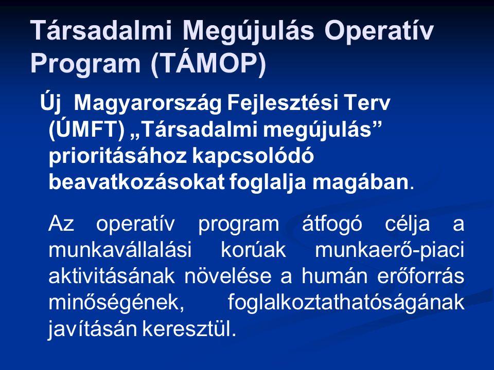 """Társadalmi Megújulás Operatív Program (TÁMOP) Új Magyarország Fejlesztési Terv (ÚMFT) """"Társadalmi megújulás prioritásához kapcsolódó beavatkozásokat foglalja magában."""