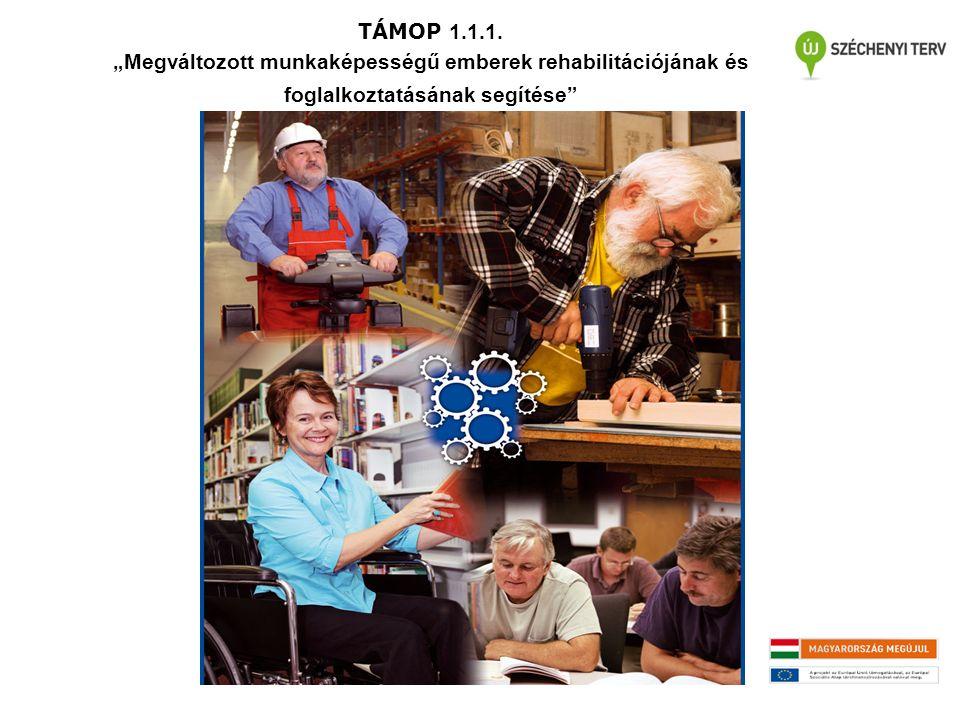 """TÁMOP 1.1.1. """"Megváltozott munkaképességű emberek rehabilitációjának és foglalkoztatásának segítése"""""""