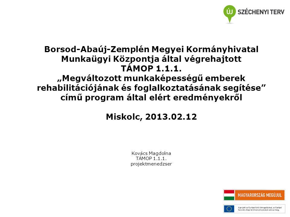 """Borsod-Abaúj-Zemplén Megyei Kormányhivatal Munkaügyi Központja által végrehajtott TÁMOP 1.1.1. """"Megváltozott munkaképességű emberek rehabilitációjának"""