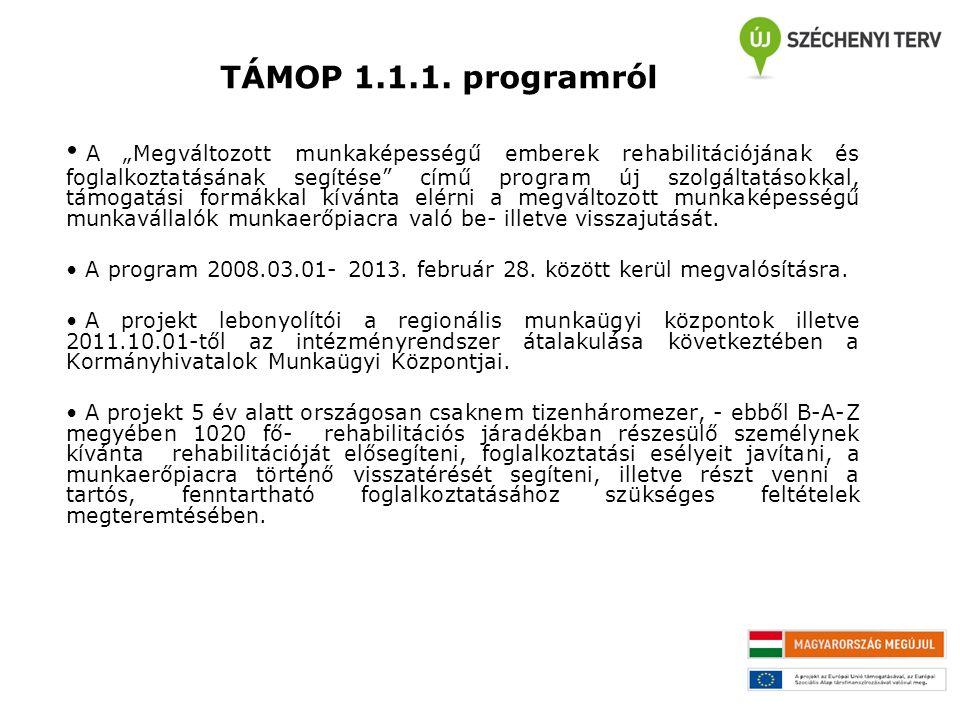 """TÁMOP 1.1.1. programról A """"Megváltozott munkaképességű emberek rehabilitációjának és foglalkoztatásának segítése"""" című program új szolgáltatásokkal, t"""