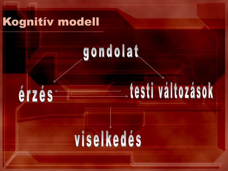 Kognitív modell