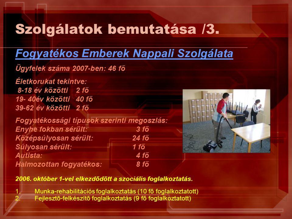 Szolgálatok bemutatása /3. Fogyatékos Emberek Nappali Szolgálata Ügyfelek száma 2007-ben: 46 fő Életkorukat tekintve: 8-18 év közötti 2 fő 19- 40év kö