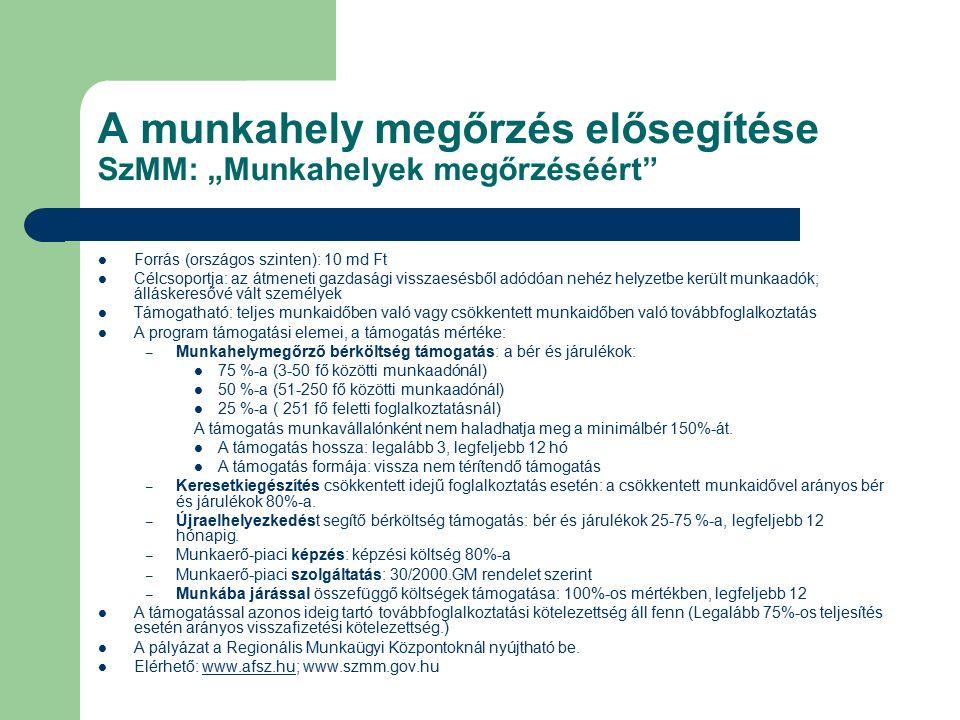 """A munkahely megőrzés elősegítése SzMM: """"Munkahelyek megőrzéséért"""" Forrás (országos szinten): 10 md Ft Célcsoportja: az átmeneti gazdasági visszaesésbő"""