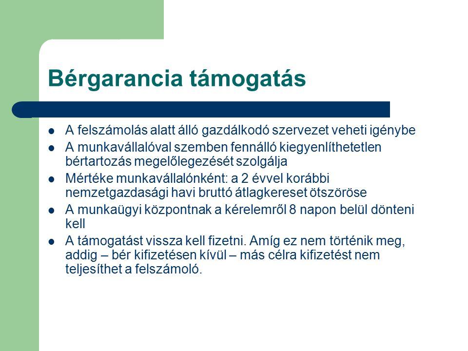 Bérgarancia támogatás A felszámolás alatt álló gazdálkodó szervezet veheti igénybe A munkavállalóval szemben fennálló kiegyenlíthetetlen bértartozás m