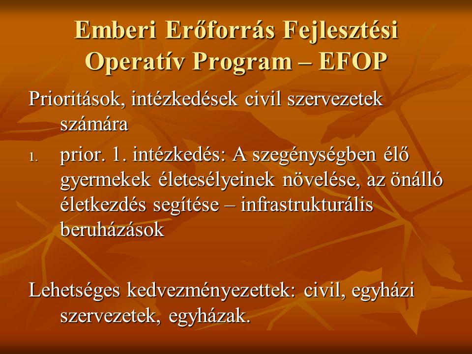 Emberi Erőforrás Fejlesztési Operatív Program – EFOP Prioritások, intézkedések civil szervezetek számára 1.