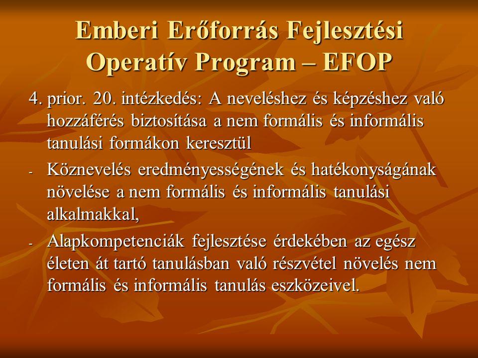 Emberi Erőforrás Fejlesztési Operatív Program – EFOP 4.