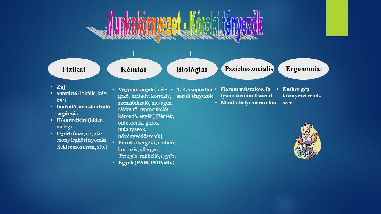FizikaiKémiaiBiológiai Pszichoszociális Zaj Vibráció (lokális, kéz- kar) Ionizáló, nem-ionizáló sugárzás Hőmérséklet (hideg, meleg) Egyéb (magas-, ala- csony légköri nyomás, elektromos áram, stb.) Vegyi anyagok (mér- gező, irritatív, korrozív, szenzibilizáló, mutagén, rákkeltő, reprodukciót károsító, egyéb) [Fémek, oldószerek, gázok, műanyagok, növényvédőszerek] Porok (mérgező, irritatív, korrozív, allergén, fibrogén, rákkeltő, egyéb) Egyéb (PAH, POP, stb.) Ergonómiai Három műszakos, fo- lyamatos munkarend Munkahelyi hierarchia Ember-gép- környezet rend- szer 1.-4.