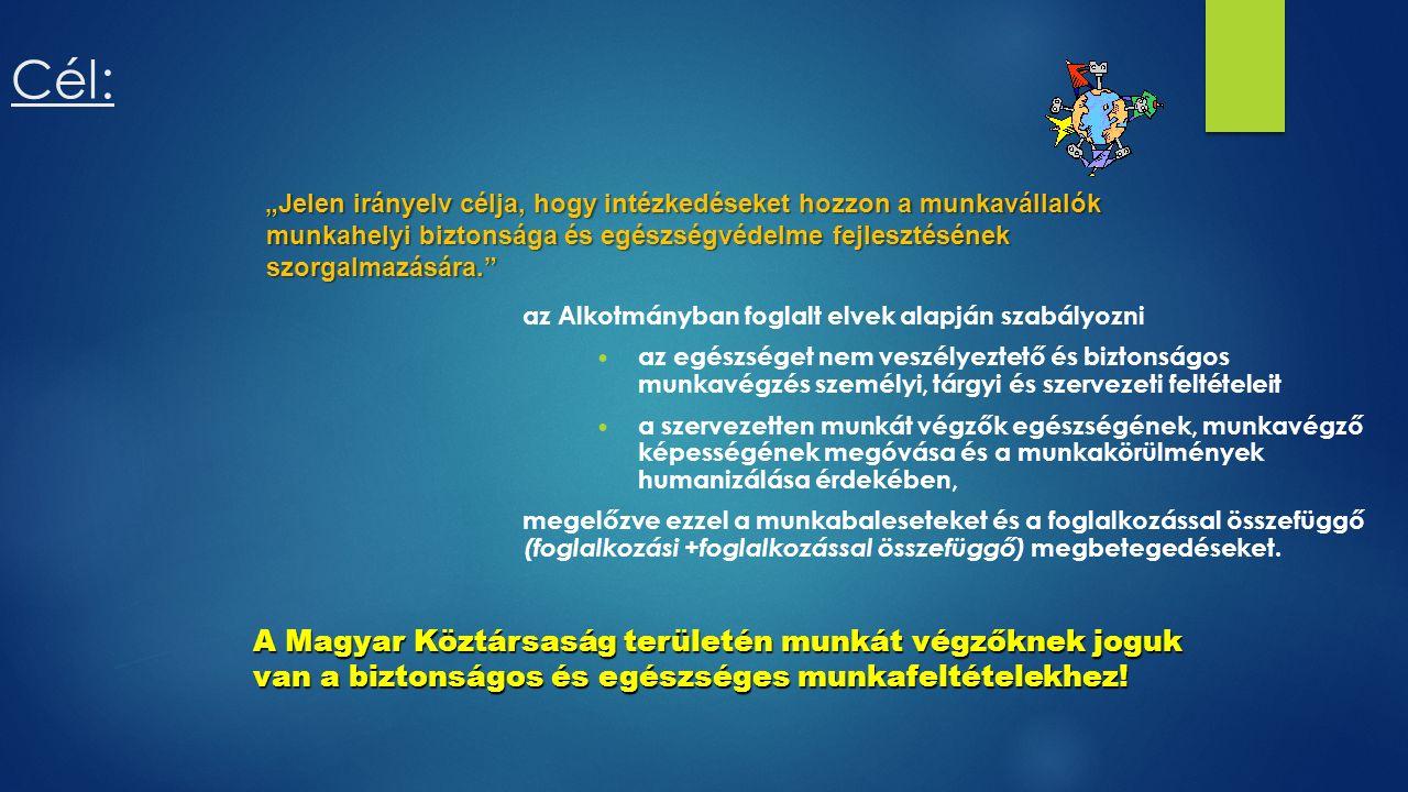 Cél: az Alkotmányban foglalt elvek alapján szabályozni az egészséget nem veszélyeztető és biztonságos munkavégzés személyi, tárgyi és szervezeti feltételeit a szervezetten munkát végzők egészségének, munkavégző képességének megóvása és a munkakörülmények humanizálása érdekében, megelőzve ezzel a munkabaleseteket és a foglalkozással összefüggő (foglalkozási +foglalkozással összefüggő) megbetegedéseket.