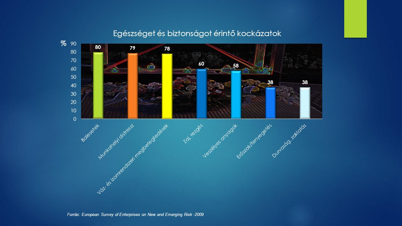 Forrás: European Survey of Enterprises on New and Emerging Risk -2009 %