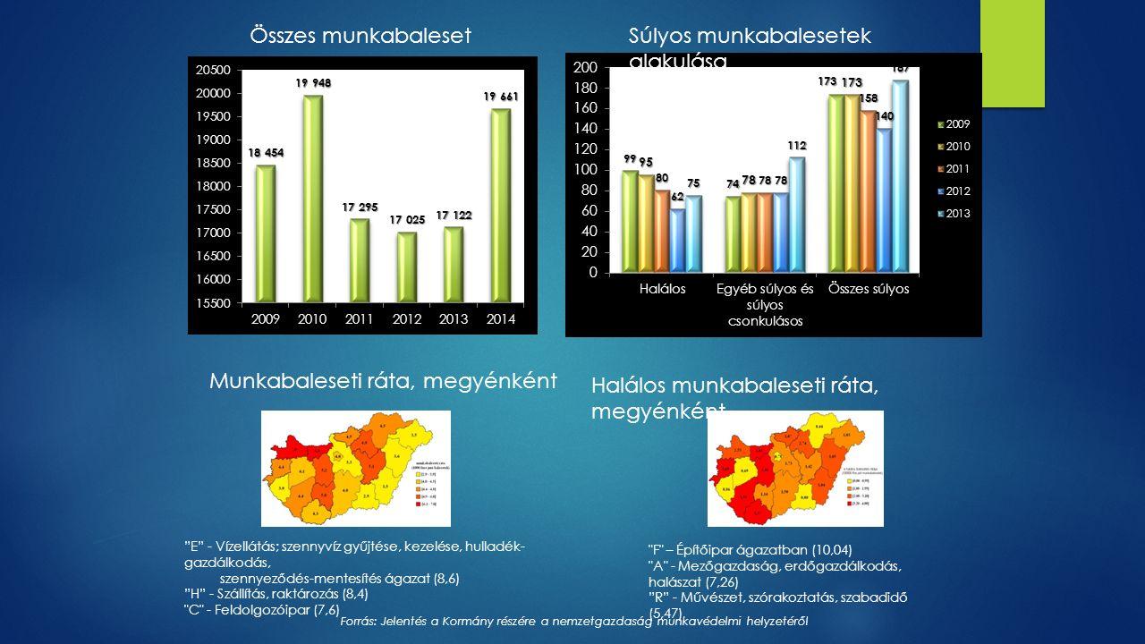 Súlyos munkabalesetek alakulása Összes munkabaleset Munkabaleseti ráta, megyénként Halálos munkabaleseti ráta, megyénként E - Vízellátás; szennyvíz gyűjtése, kezelése, hulladék- gazdálkodás, szennyeződés-mentesítés ágazat (8,6) H - Szállítás, raktározás (8,4) C - Feldolgozóipar (7,6) F – Építőipar ágazatban (10,04) A - Mezőgazdaság, erdőgazdálkodás, halászat (7,26) R - Művészet, szórakoztatás, szabadidő (5,47) Forrás: Jelentés a Kormány részére a nemzetgazdaság munkavédelmi helyzetéről