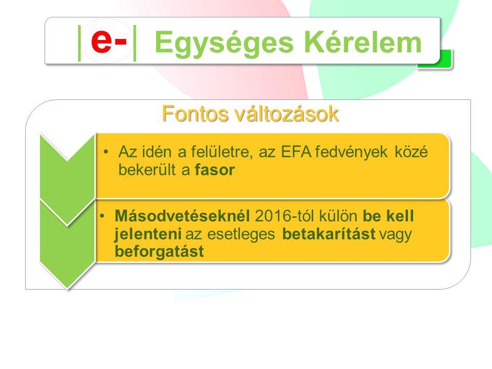 Fontos változások Másodvetéseknél 2016-tól külön be kell jelenteni az esetleges betakarítást vagy beforgatást Az idén a felületre, az EFA fedvények közé bekerült a fasor │ e- │ Egységes Kérelem