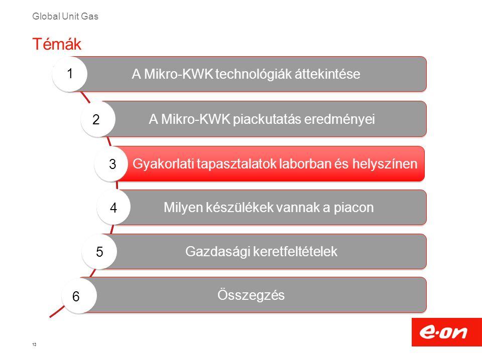 Global Unit Gas Gyakorlati tapasztalatok laborban és helyszínen 13 Milyen készülékek vannak a piacon A Mikro-KWK technológiák áttekintése A Mikro-KWK