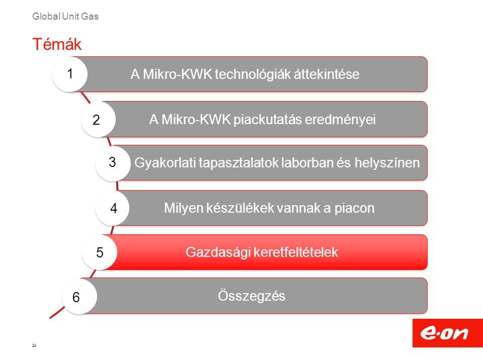 Global Unit Gas 24 Milyen készülékek vannak a piacon Gyakorlati tapasztalatok laborban és helyszínen A Mikro-KWK technológiák áttekintése A Mikro-KWK