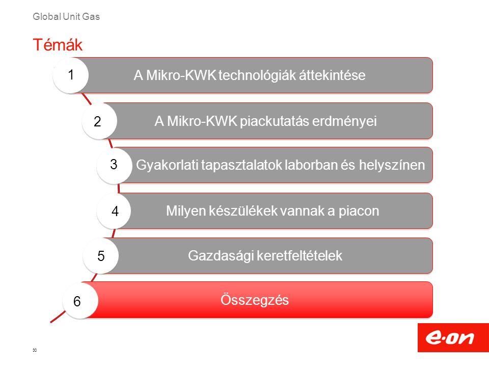 Global Unit Gas 30 Milyen készülékek vannak a piacon Gyakorlati tapasztalatok laborban és helyszínen A Mikro-KWK technológiák áttekintése A Mikro-KWK