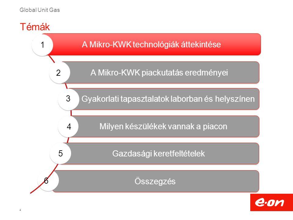 Global Unit Gas Összegzés 4 Témák Milyen készülékek vannak a piacon Gyakorlati tapasztalatok laborban és helyszínen A Mikro-KWK technológiák áttekinté