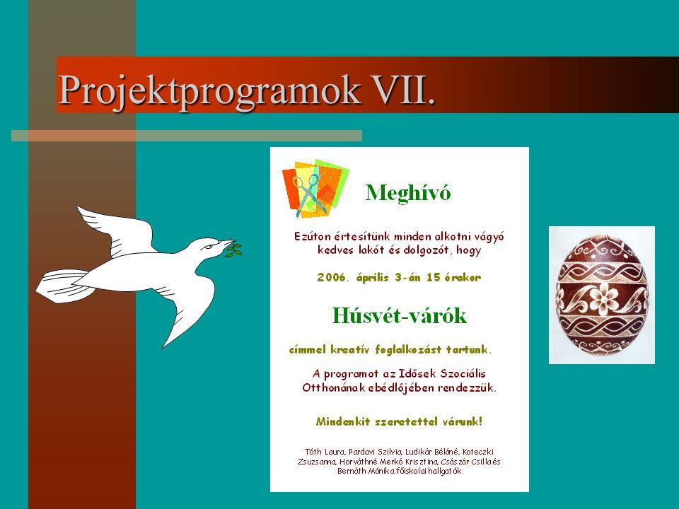 Projektprogramok VII.