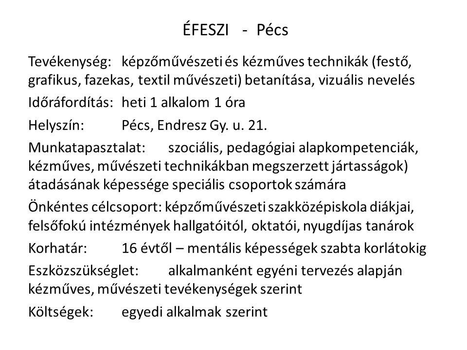 ÉFESZI - Pécs Tevékenység: képzőművészeti és kézműves technikák (festő, grafikus, fazekas, textil művészeti) betanítása, vizuális nevelés Időráfordítás:heti 1 alkalom 1 óra Helyszín:Pécs, Endresz Gy.
