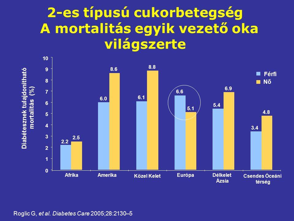 2-es típusú cukorbetegség A mortalitás egyik vezető oka világszerte 3.4 5.4 6.6 6.1 6.0 2.2 4.8 6.9 5.1 8.8 8.6 2.5 0 1 2 3 4 5 6 7 8 9 10 Diabétesznek tulajdonítható mortalitás (%) AfrikaAmerika Közel Kelet EurópaDélkelet Ázsia Csendes Óceáni térség Férfi Nő Roglic G, et al.