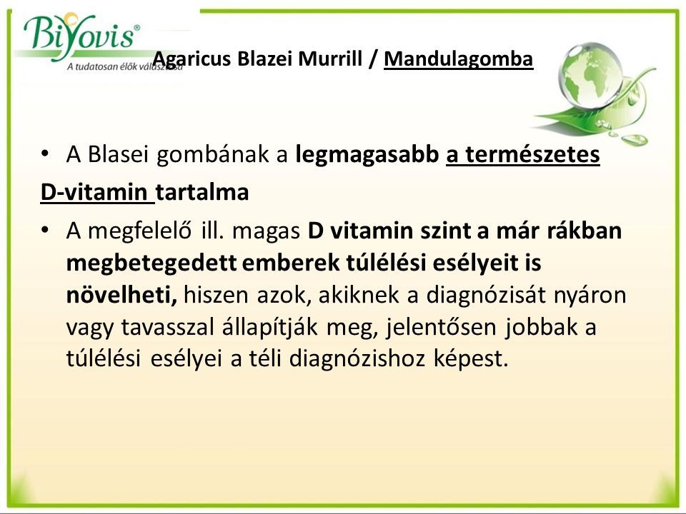 Agaricus Blazei Murrill / Mandulagomba A Blasei gombának a legmagasabb a természetes D-vitamin tartalma A megfelelő ill. magas D vitamin szint a már r