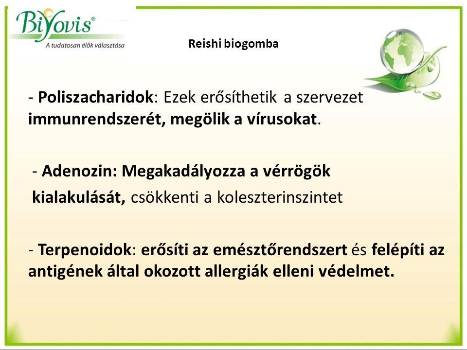 Reishi biogomba - Poliszacharidok: Ezek erősíthetik a szervezet immunrendszerét, megölik a vírusokat. - Adenozin: Megakadályozza a vérrögök kialakulás