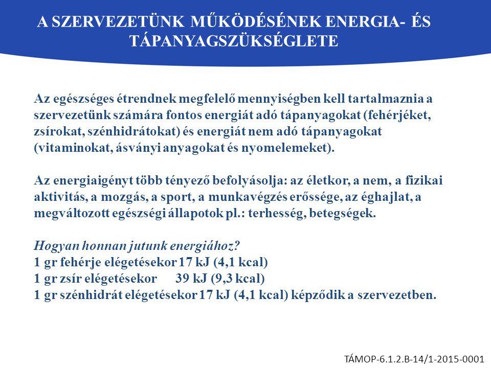 A SZERVEZETÜNK MŰKÖDÉSÉNEK ENERGIA- ÉS TÁPANYAGSZÜKSÉGLETE TÁMOP-6.1.2.B-14/1-2015-0001 Az egészséges étrendnek megfelelő mennyiségben kell tartalmazn