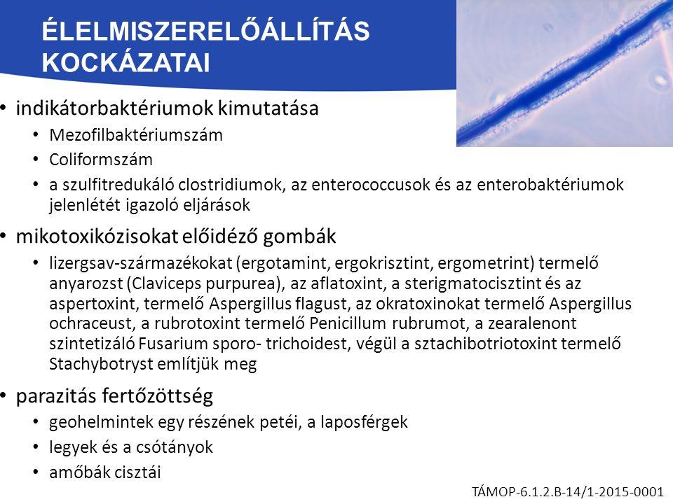 ÉLELMISZERELŐÁLLÍTÁS KOCKÁZATAI indikátorbaktériumok kimutatása Mezofilbaktériumszám Coliformszám a szulfitredukáló clostridiumok, az enterococcusok és az enterobaktériumok jelenlétét igazoló eljárások mikotoxikózisokat előidéző gombák lizergsav-származékokat (ergotamint, ergokrisztint, ergometrint) termelő anyarozst (Claviceps purpurea), az aflatoxint, a sterigmatocisztint és az aspertoxint, termelő Aspergillus flagust, az okratoxinokat termelő Aspergillus ochraceust, a rubrotoxint termelő Penicillum rubrumot, a zearalenont szintetizáló Fusarium sporo- trichoidest, végül a sztachibotriotoxint termelő Stachybotryst említjük meg parazitás fertőzöttség geohelmintek egy részének petéi, a laposférgek legyek és a csótányok amőbák cisztái TÁMOP-6.1.2.B-14/1-2015-0001