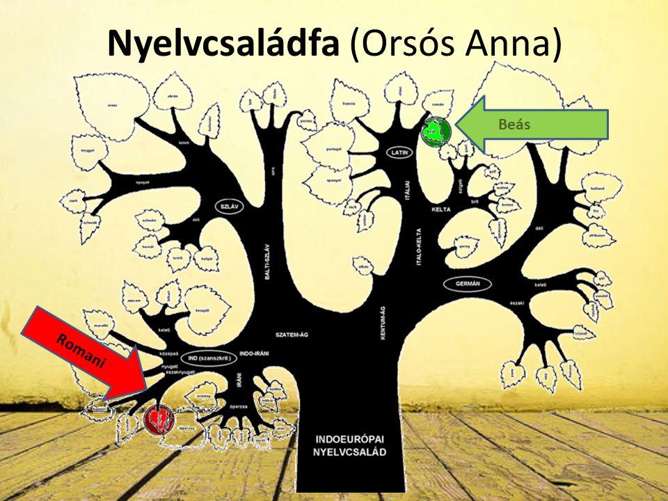 Nyelvcsaládfa (Orsós Anna) Romani Beás
