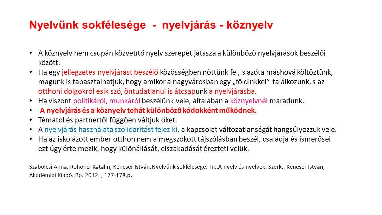 A köznyelv nem csupán közvetítő nyelv szerepét játssza a különböző nyelvjárások beszélői között.