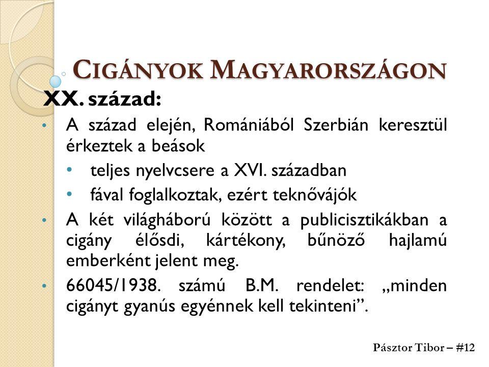 C IGÁNYOK M AGYARORSZÁGON XX. század: A század elején, Romániából Szerbián keresztül érkeztek a beások teljes nyelvcsere a XVI. században fával foglal