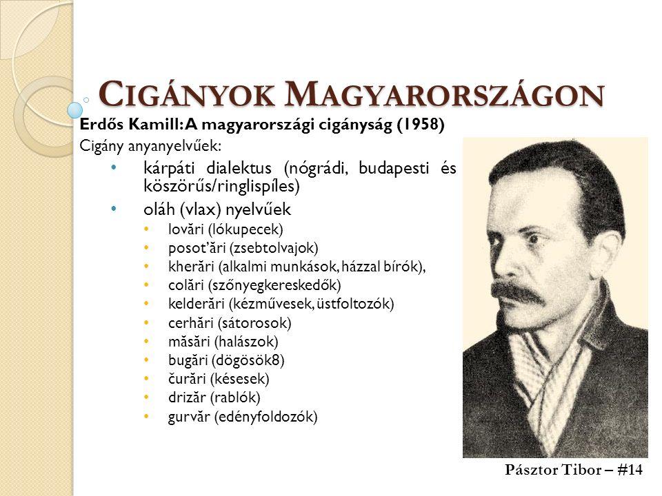 C IGÁNYOK M AGYARORSZÁGON Erdős Kamill: A magyarországi cigányság (1958) Cigány anyanyelvűek: kárpáti dialektus (nógrádi, budapesti és köszörűs/ringli