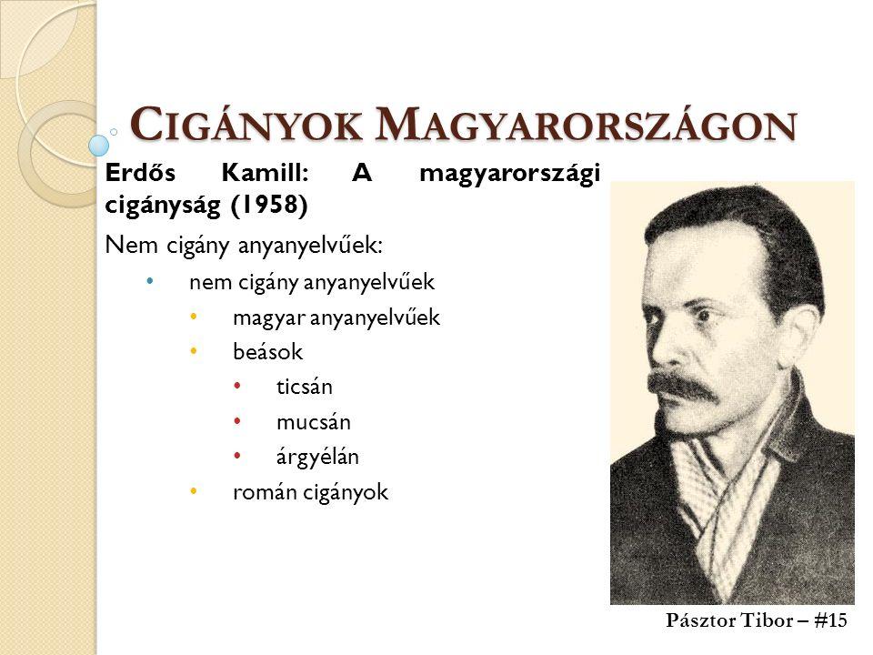 C IGÁNYOK M AGYARORSZÁGON Erdős Kamill: A magyarországi cigányság (1958) Nem cigány anyanyelvűek: nem cigány anyanyelvűek magyar anyanyelvűek beások ticsán mucsán árgyélán román cigányok Pásztor Tibor – #15