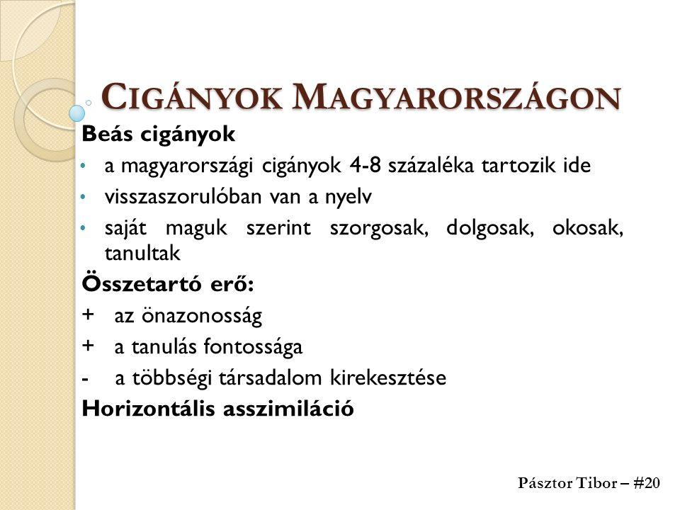C IGÁNYOK M AGYARORSZÁGON Beás cigányok a magyarországi cigányok 4-8 százaléka tartozik ide visszaszorulóban van a nyelv saját maguk szerint szorgosak, dolgosak, okosak, tanultak Összetartó erő: + az önazonosság + a tanulás fontossága - a többségi társadalom kirekesztése Horizontális asszimiláció Pásztor Tibor – #20
