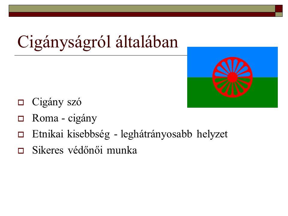 Cigányságról általában  Cigány szó  Roma - cigány  Etnikai kisebbség - leghátrányosabb helyzet  Sikeres védőnői munka