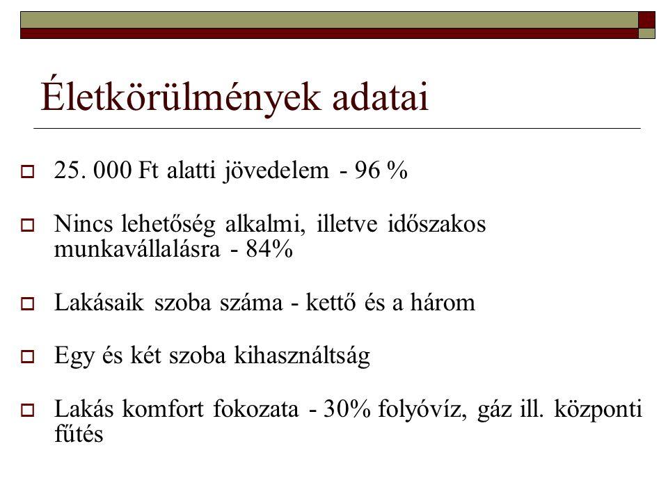 Életkörülmények adatai  25.