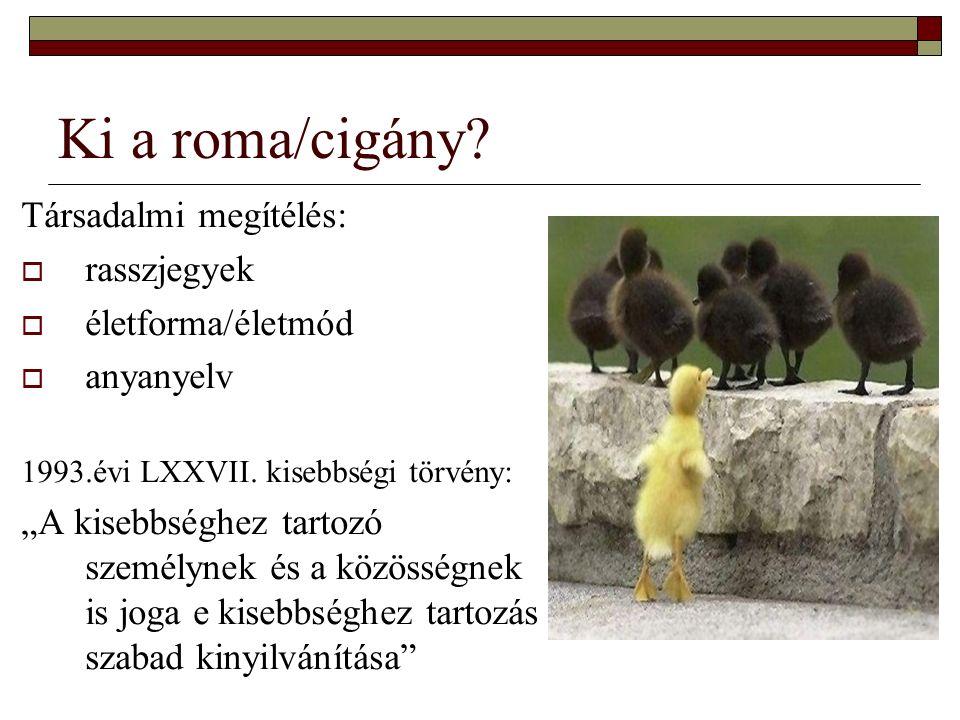 """Ki a roma/cigány? Társadalmi megítélés:  rasszjegyek  életforma/életmód  anyanyelv 1993.évi LXXVII. kisebbségi törvény: """"A kisebbséghez tartozó sze"""