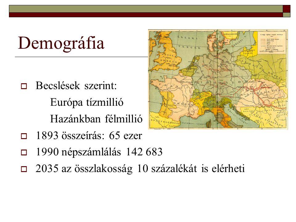 Demográfia  Becslések szerint: Európa tízmillió Hazánkban félmillió  1893 összeírás: 65 ezer  1990 népszámlálás 142 683  2035 az összlakosság 10 százalékát is elérheti