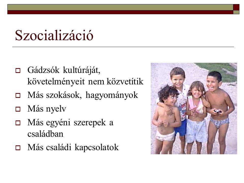 Szocializáció  Gádzsók kultúráját, követelményeit nem közvetítik  Más szokások, hagyományok  Más nyelv  Más egyéni szerepek a családban  Más családi kapcsolatok