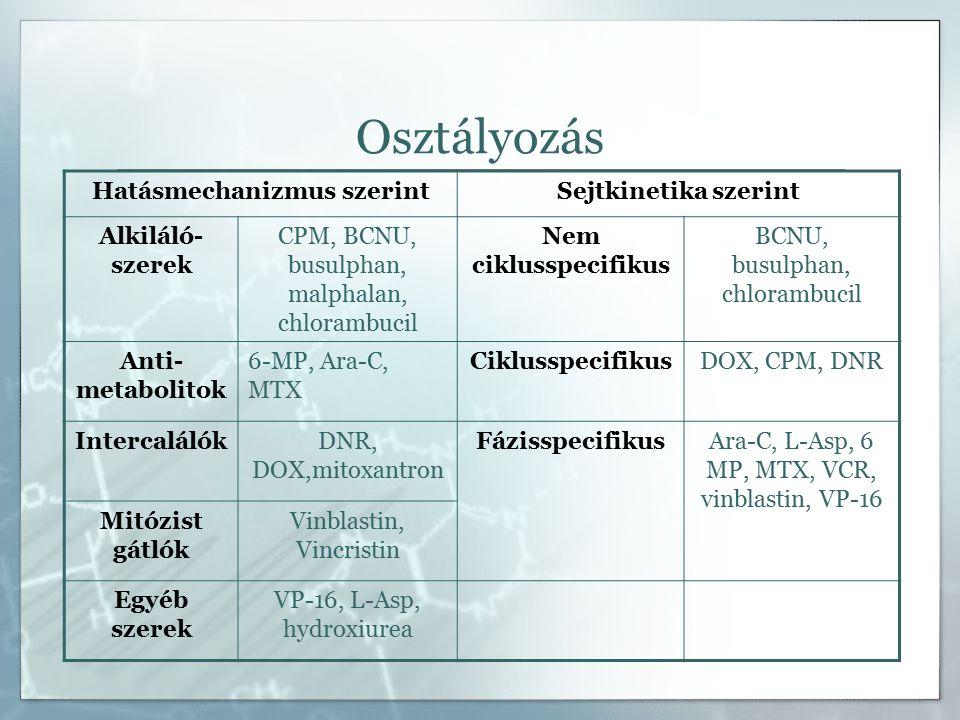Osztályozás Hatásmechanizmus szerintSejtkinetika szerint Alkiláló- szerek CPM, BCNU, busulphan, malphalan, chlorambucil Nem ciklusspecifikus BCNU, busulphan, chlorambucil Anti- metabolitok 6-MP, Ara-C, MTX CiklusspecifikusDOX, CPM, DNR IntercalálókDNR, DOX,mitoxantron FázisspecifikusAra-C, L-Asp, 6 MP, MTX, VCR, vinblastin, VP-16 Mitózist gátlók Vinblastin, Vincristin Egyéb szerek VP-16, L-Asp, hydroxiurea