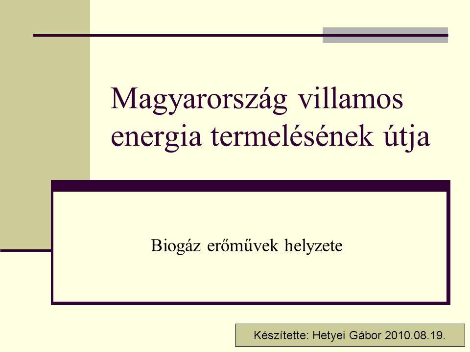 Magyarország villamos energia termelésének útja Biogáz erőművek helyzete Készítette: Hetyei Gábor 2010.08.19.