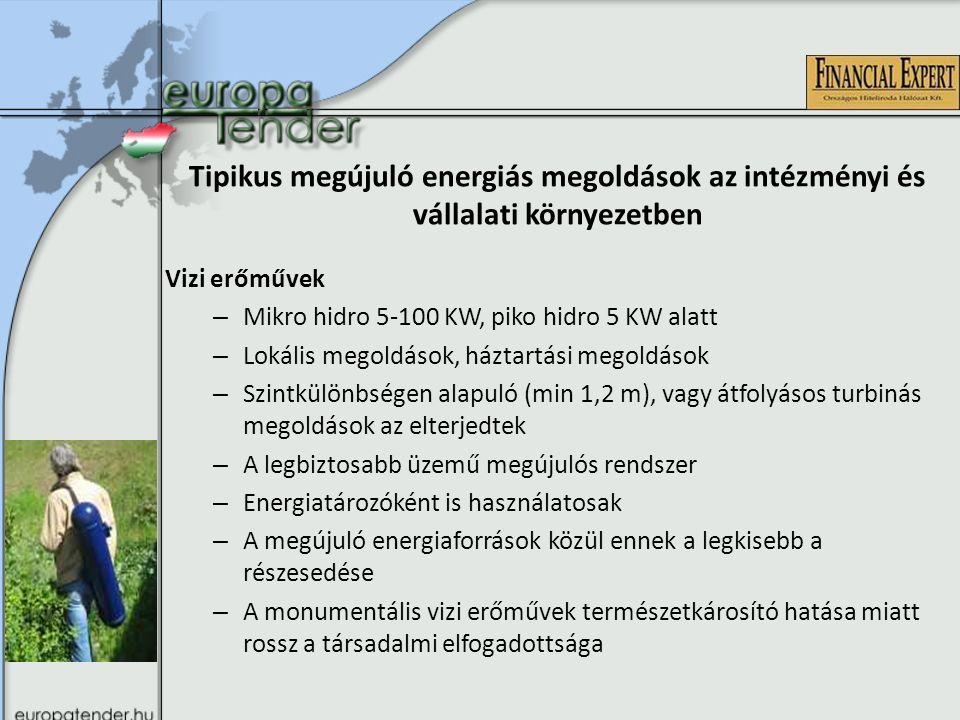 Tipikus megújuló energiás megoldások az intézményi és vállalati környezetben Biomassza alapú rendszerek – Biomassza hasznosítás hőigény kiszolgálására – Biomassza alapanyagból biogáz előállítása – Elektromos áram előállítása (kombinált erőművek, gázmotorok) – Technológiai folyamatokhoz hő ellátás biztosítása – Biomassza alapanyag energiahordozóvá alakítása (saját aprító, vagy pelletáló) – Mezőgazdasági hulladékok felhasználása (20 km) -> foglalkoztatottság növelése – Technológiai hulladékok felhasználása – Szoros együttműködés a mezőgazdasági és az erdőgazdálkodási szakemberekkel, fenntartható gazdálkodás -> tilos lesz az 5 cm feletti fa kivágása és égetése a biomassza erőművekben