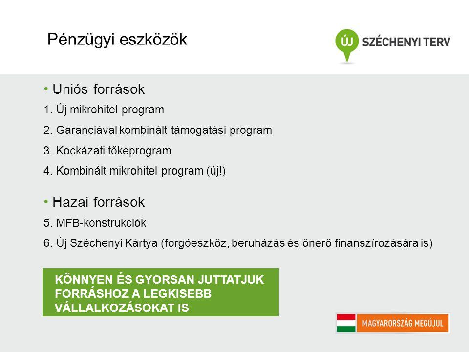 Uniós források 1. Új mikrohitel program 2. Garanciával kombinált támogatási program 3. Kockázati tőkeprogram 4. Kombinált mikrohitel program (új!) Haz