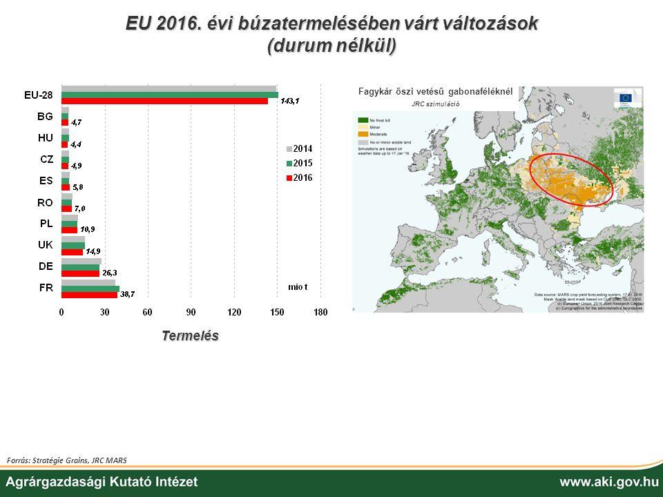 EU 2016. évi búzatermelésében várt változások (durum nélkül) Forrás: Stratégie Grains, JRC MARS Fagykár őszi vetésű gabonaféléknél JRC szimuláció Term