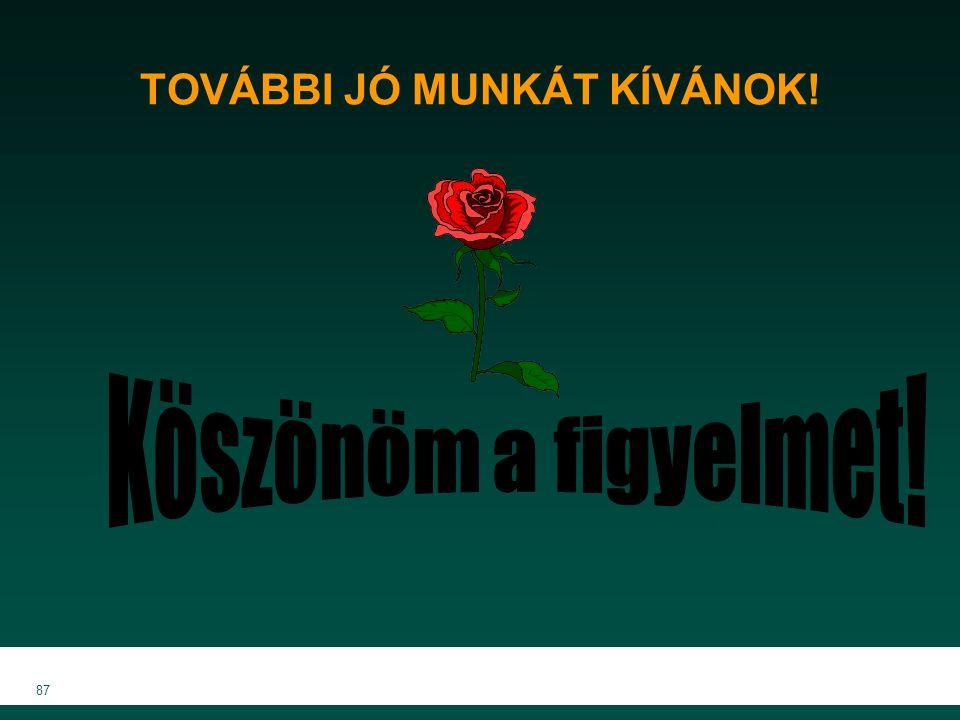 MKVK MEB 2007 87 TOVÁBBI JÓ MUNKÁT KÍVÁNOK!