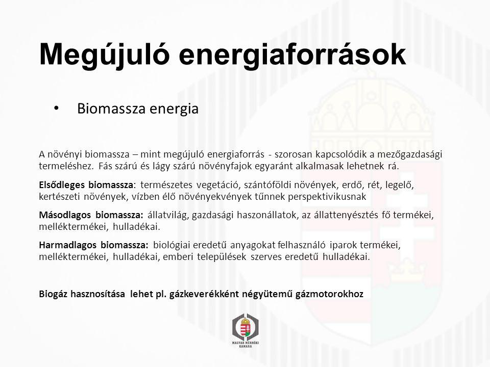 Megújuló energiaforrások Biomassza energia A növényi biomassza – mint megújuló energiaforrás - szorosan kapcsolódik a mezőgazdasági termeléshez.