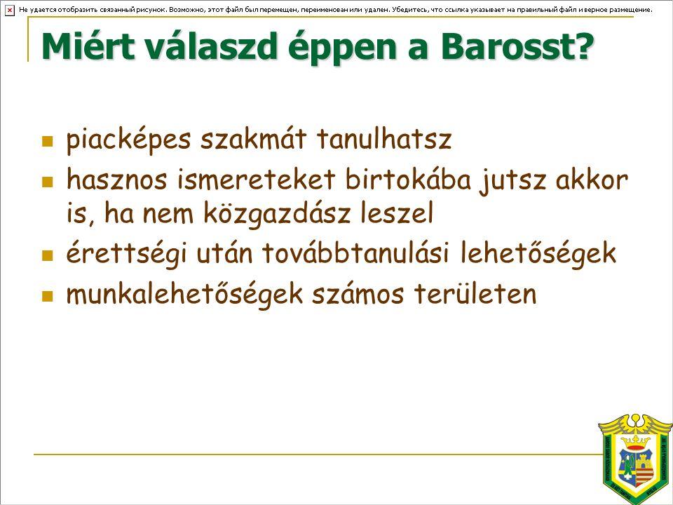 Miért válaszd éppen a Barosst.